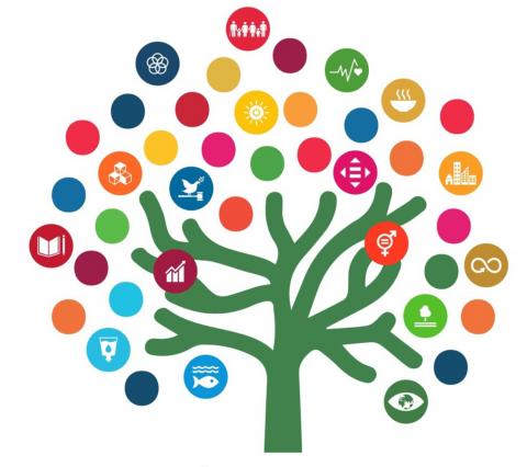Curso Agenda 2030 Unesco Etxea