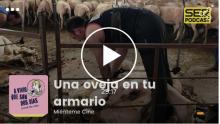 Una oveja en tu armario podcast lana